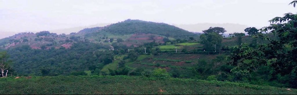Kalyaran Hills
