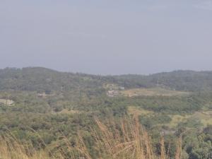 Nelliampathi Forest